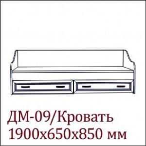 ДМ-09 (1,9м)