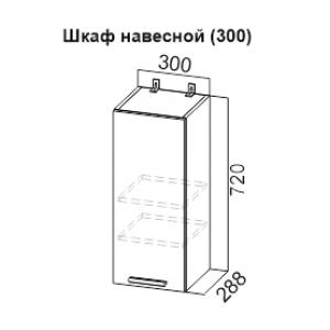 Шкаф 300